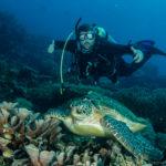 dumaguete an underwater paradise awaits